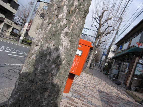 木に人陰向こうにポスト