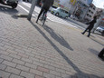 信号待つ自転車と柱の長い影